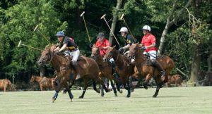 Hessischer Poloclub Luisenlust e.V.